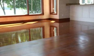 Buff and Recoat - Rochester Hardwood Floor